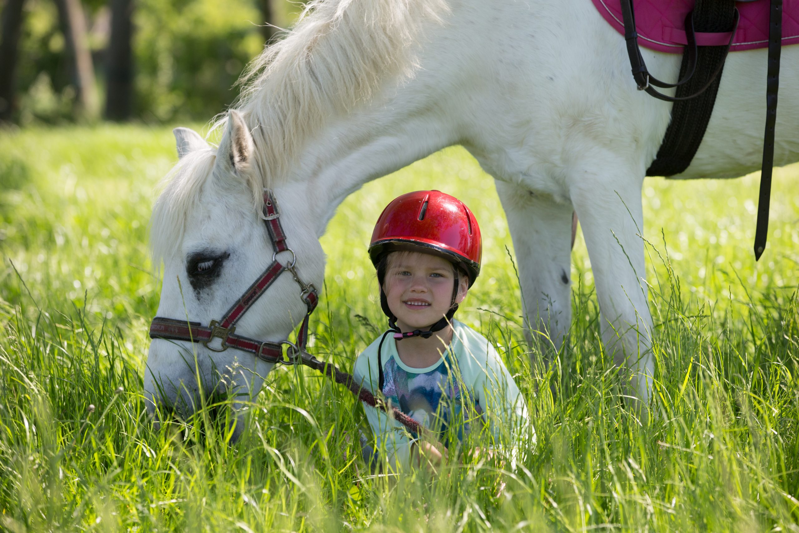Gut Friederikenhof - Reiterin und Pony genießen das Gras