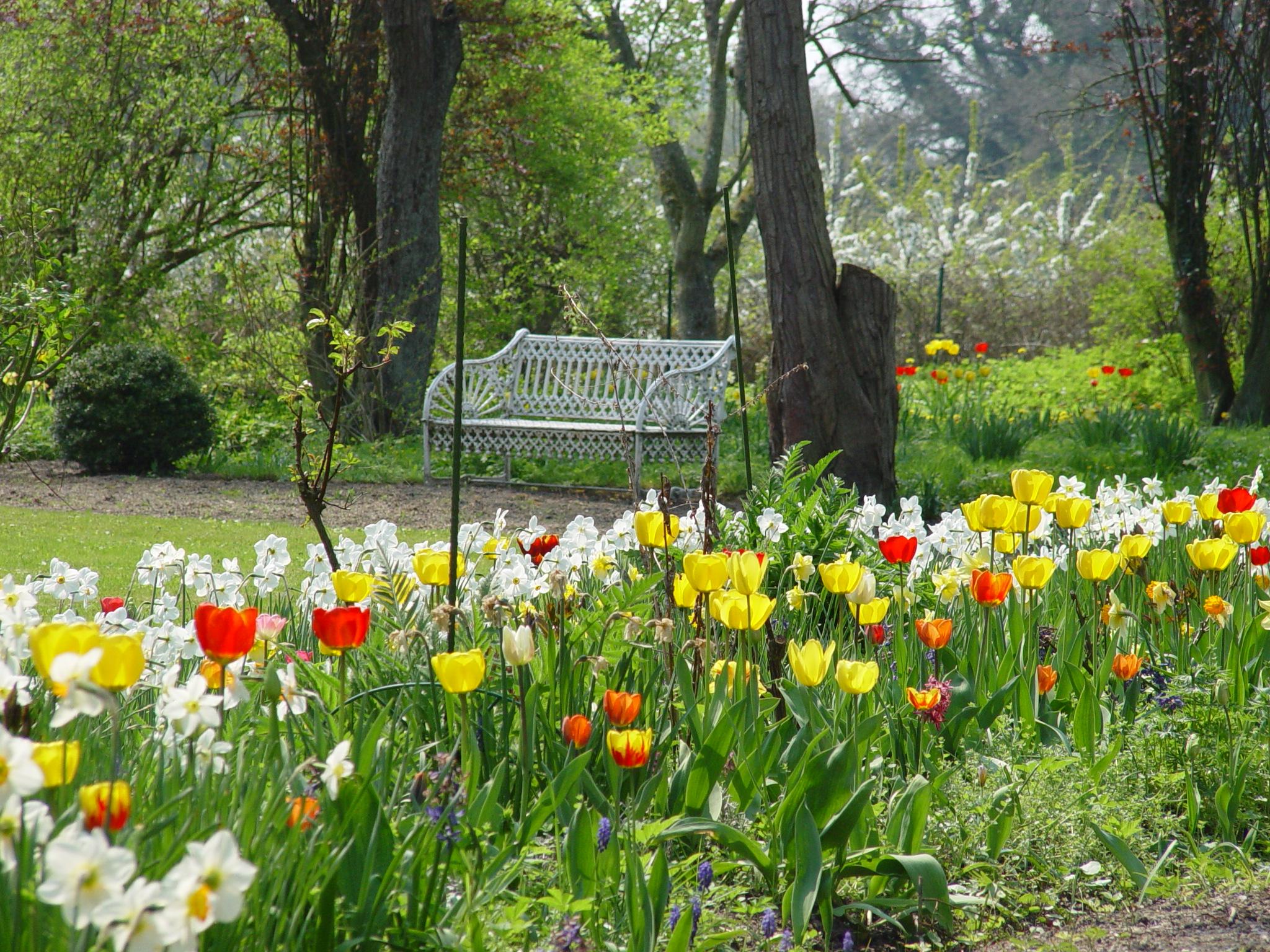 Gut Friederikenhof - ein idyllischer Platz inmitten der Frühlingsblumen