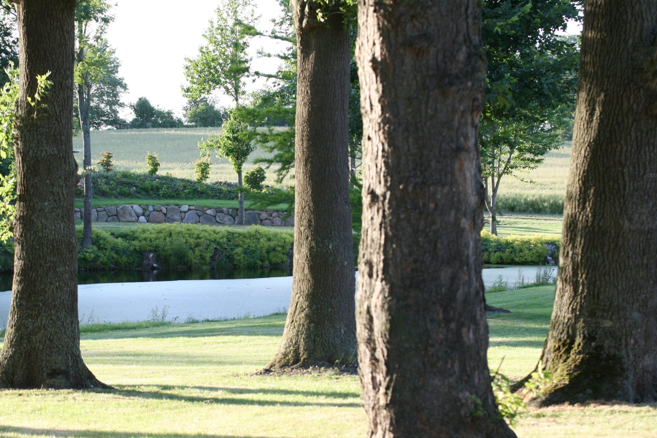 Gut Friederikenhof - weite Grünflächen