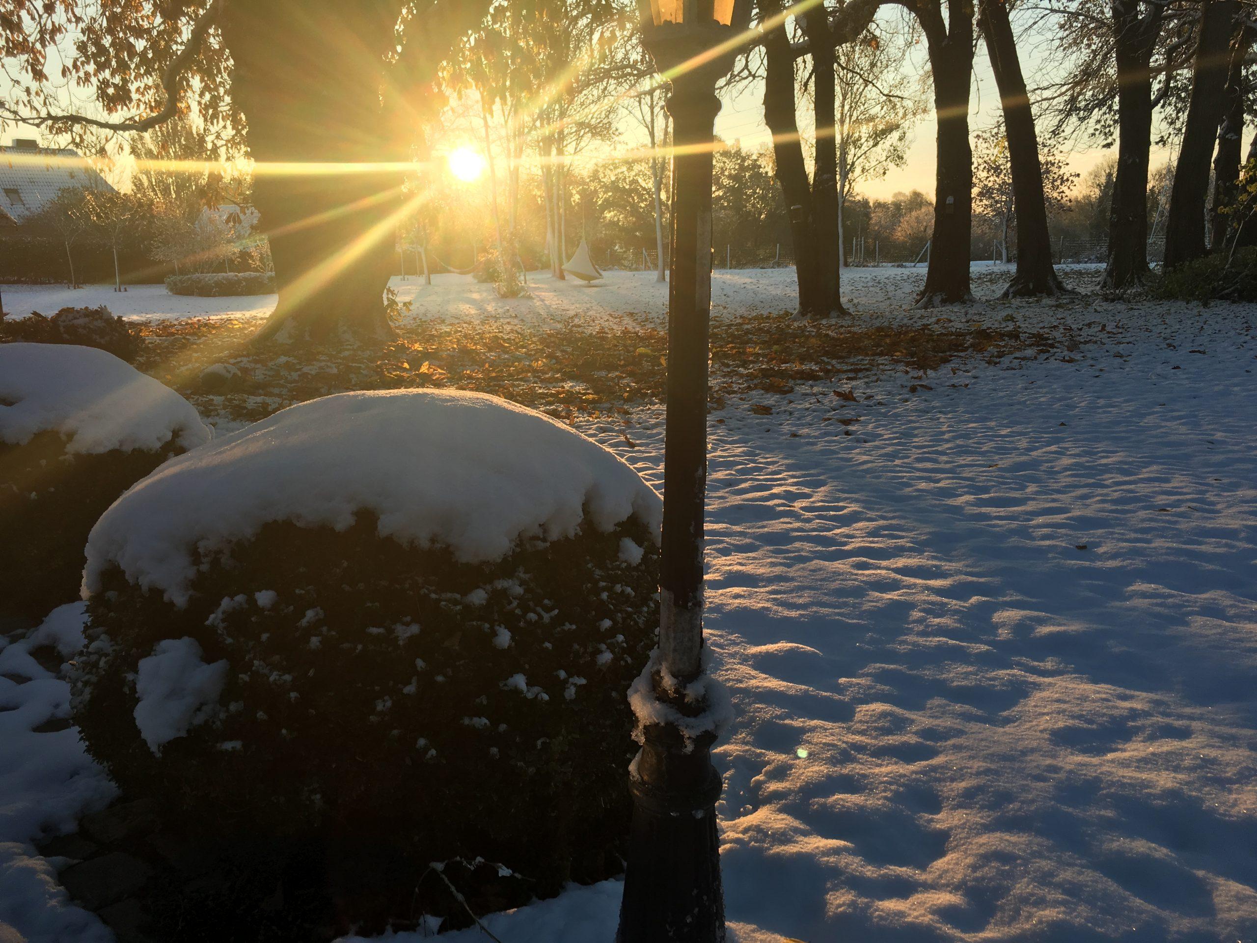 Gut Friederikenhof - schönstes Winterwetter