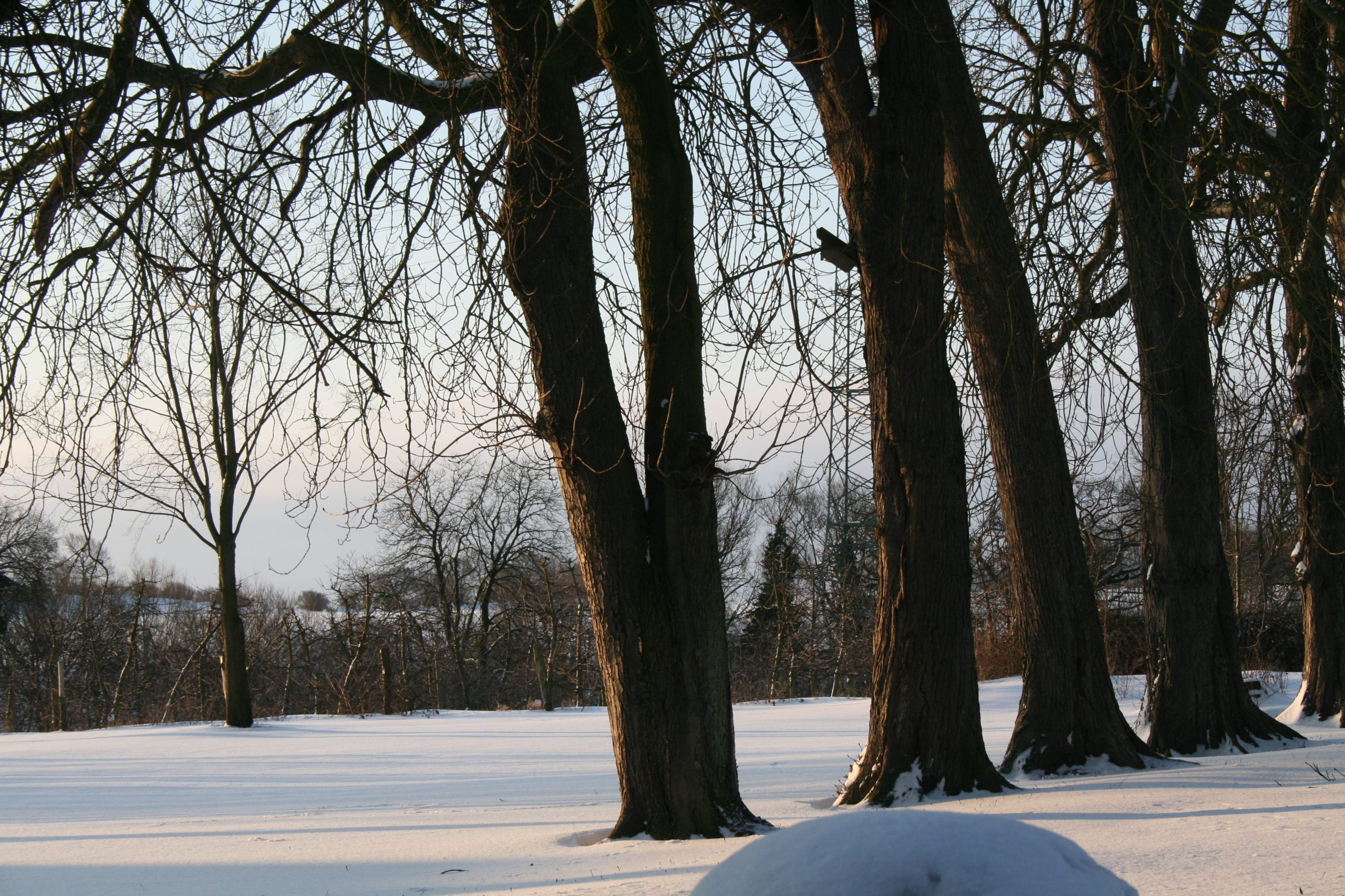 Gut Friederikenhof - Schneelandschaft