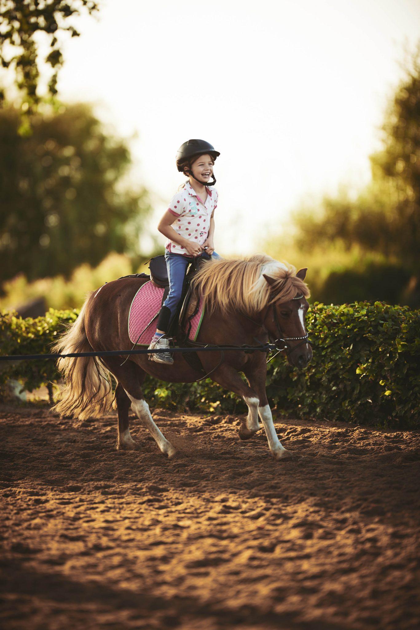 Gut Friederikenhof - Ponyreiten