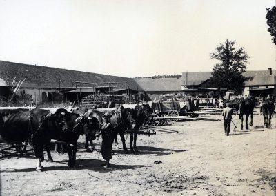 Landwirtscahftlicher Betrieb im Innenhof von Kresau, ca 1920