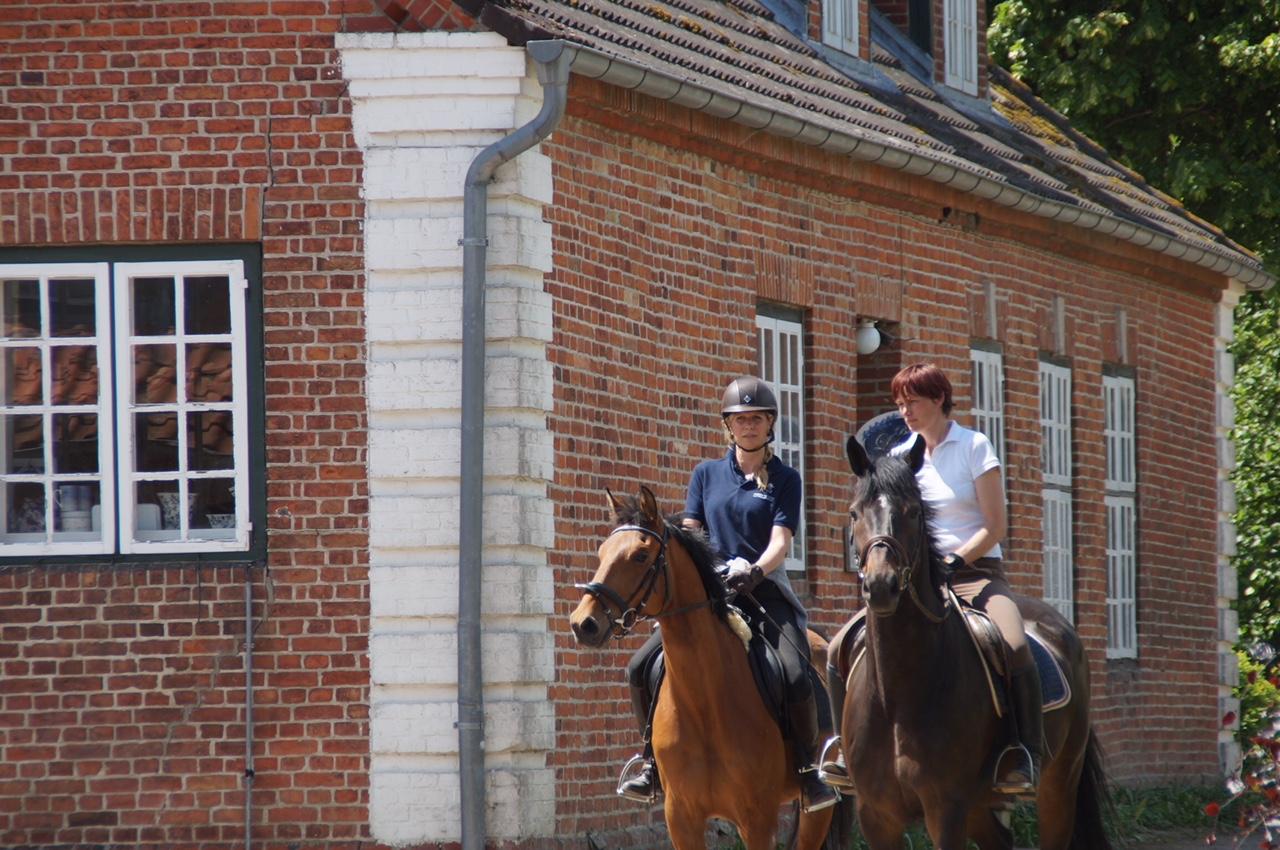 Gut Friederikenhof - Pferde und Reiter fühlen sich Wohl