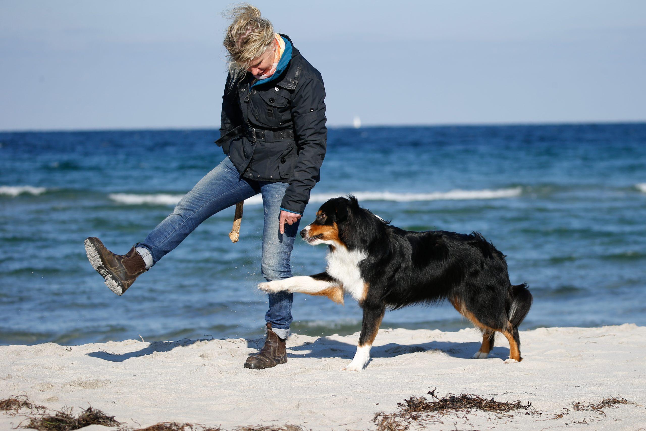 Gut Friederikenhof - Hundefreunde