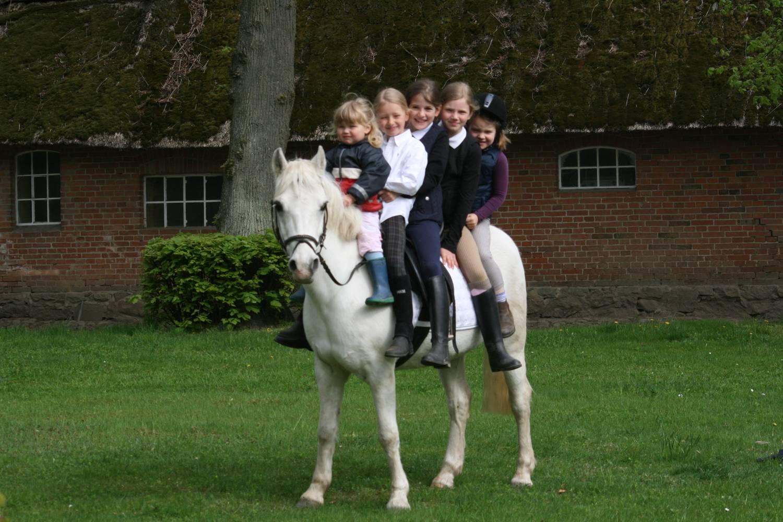 Gut Friederikenhof - gemeinsames Ponyreiten