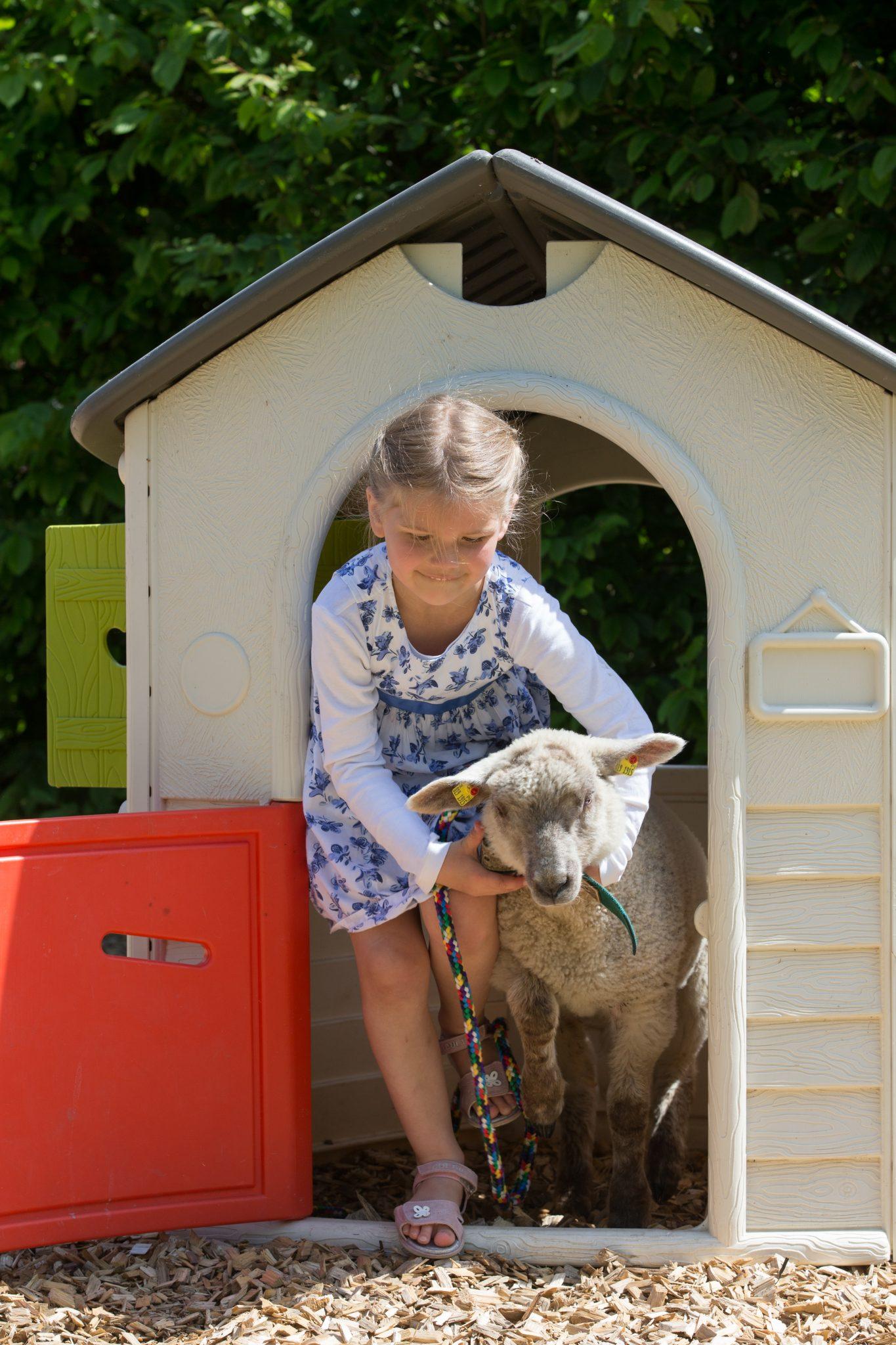 Gut Friederikenhof - auch die Schafe dürfen auf den Spielplatz