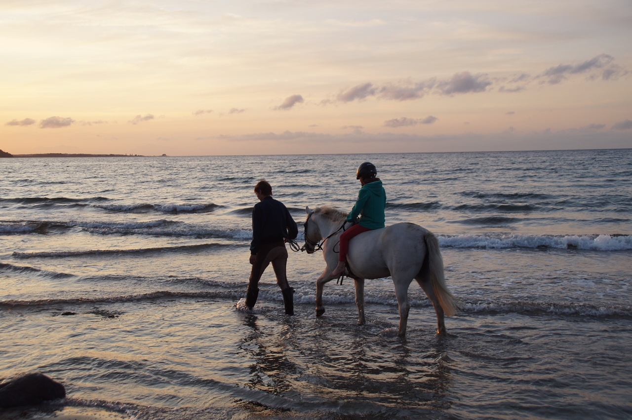 Gut Friederikenhof - reiten am Strand