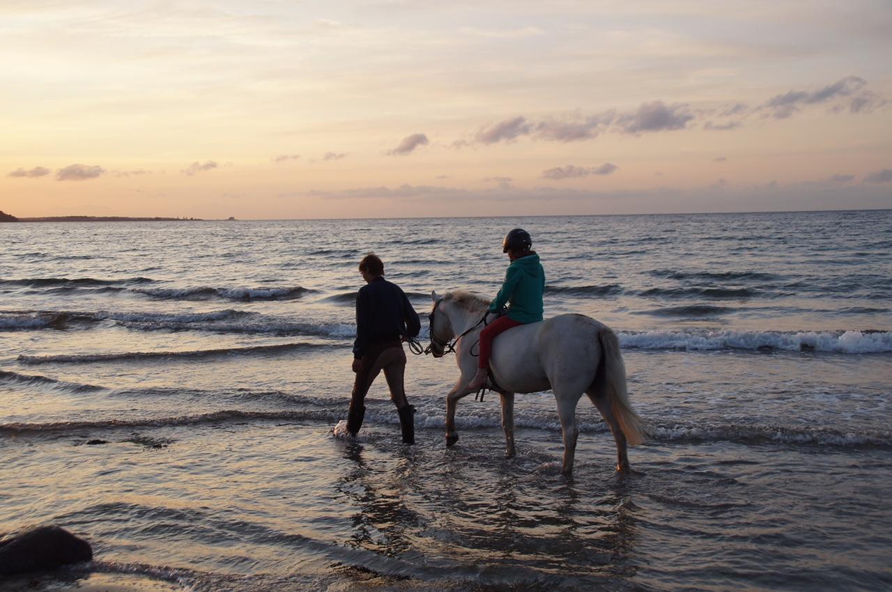 Gut Friederikenhof - reiten am Strand