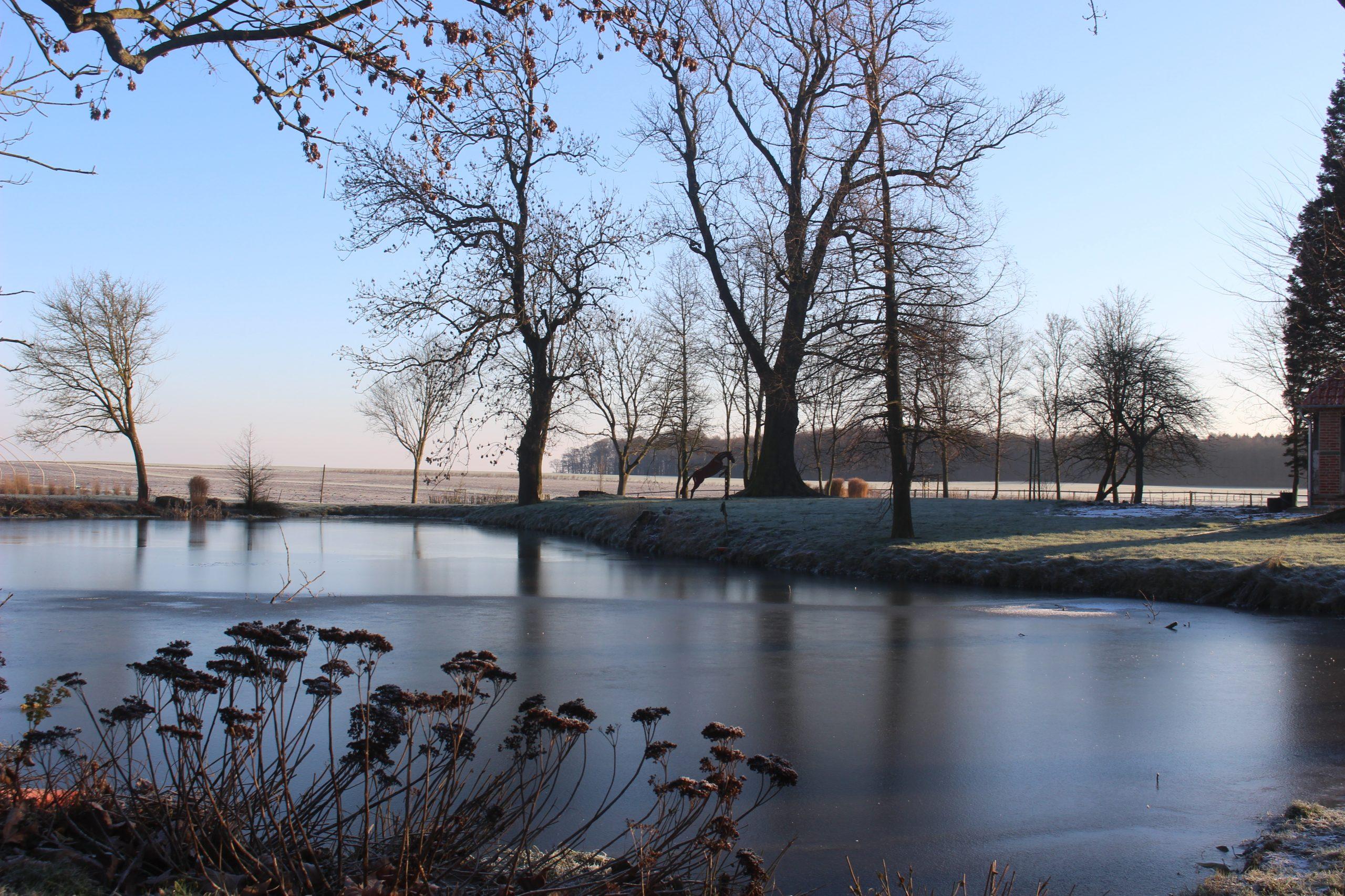 Gut Friederikenhof - Winterwunderland